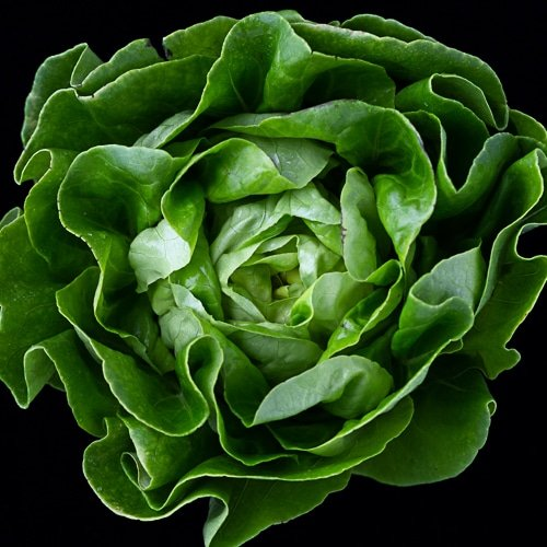 Essential Foods For Mens Health Leafy Greens