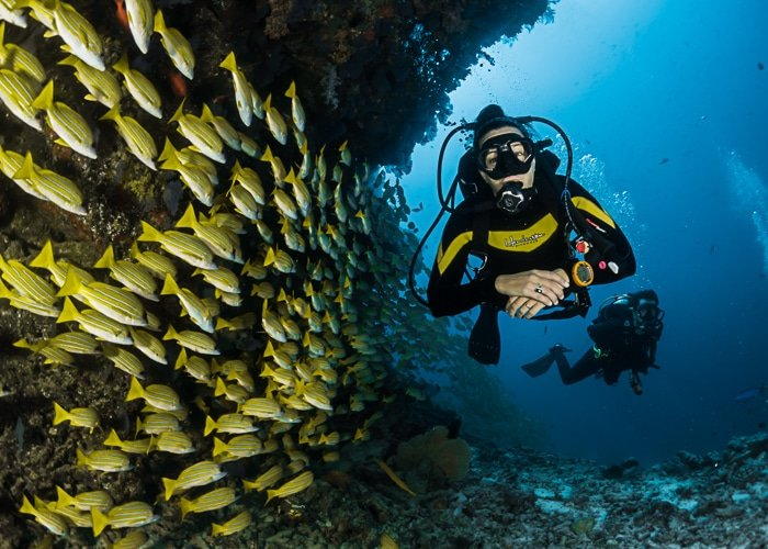 Man Hobbies Scuba Diving